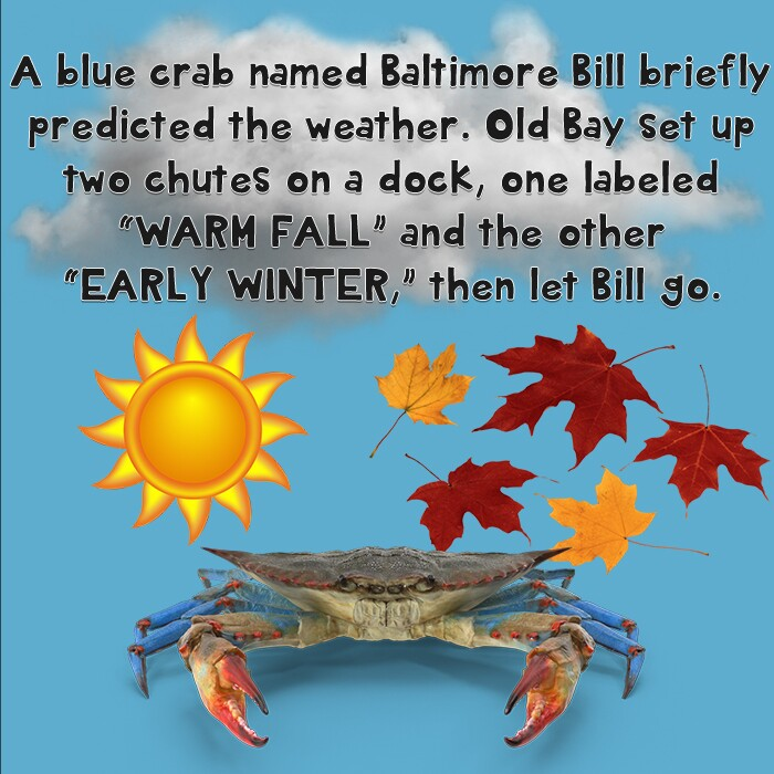 Baltimore Bill.jpg