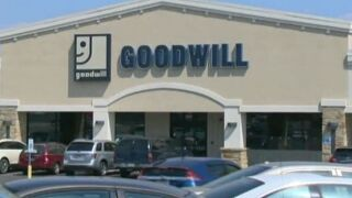 Six Goodwill employees injured by bear spray