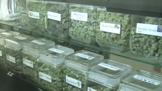 Las Vegas mother says pot smell is making family sick