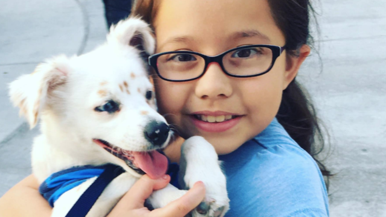 Deaf child and deaf dog bond through ASL