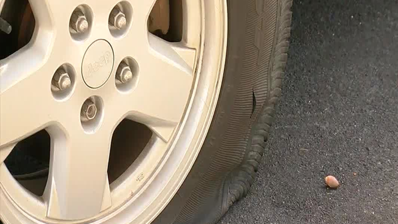 Nearly a dozen car tires slashed in Riverview