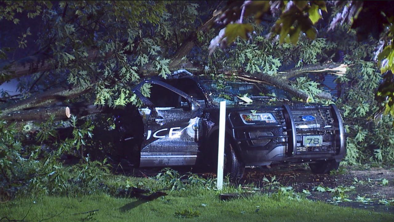 Tree fallen on officer