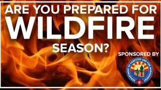 wildfire season 2.jpg