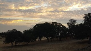 Paso Robles mid-level clouds