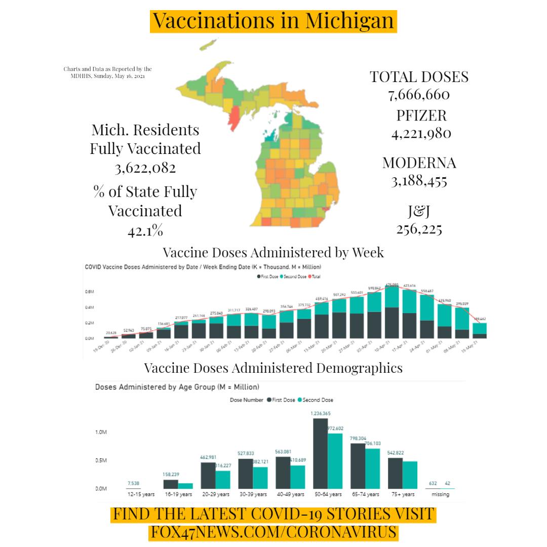 Michigan Vaccination Rates