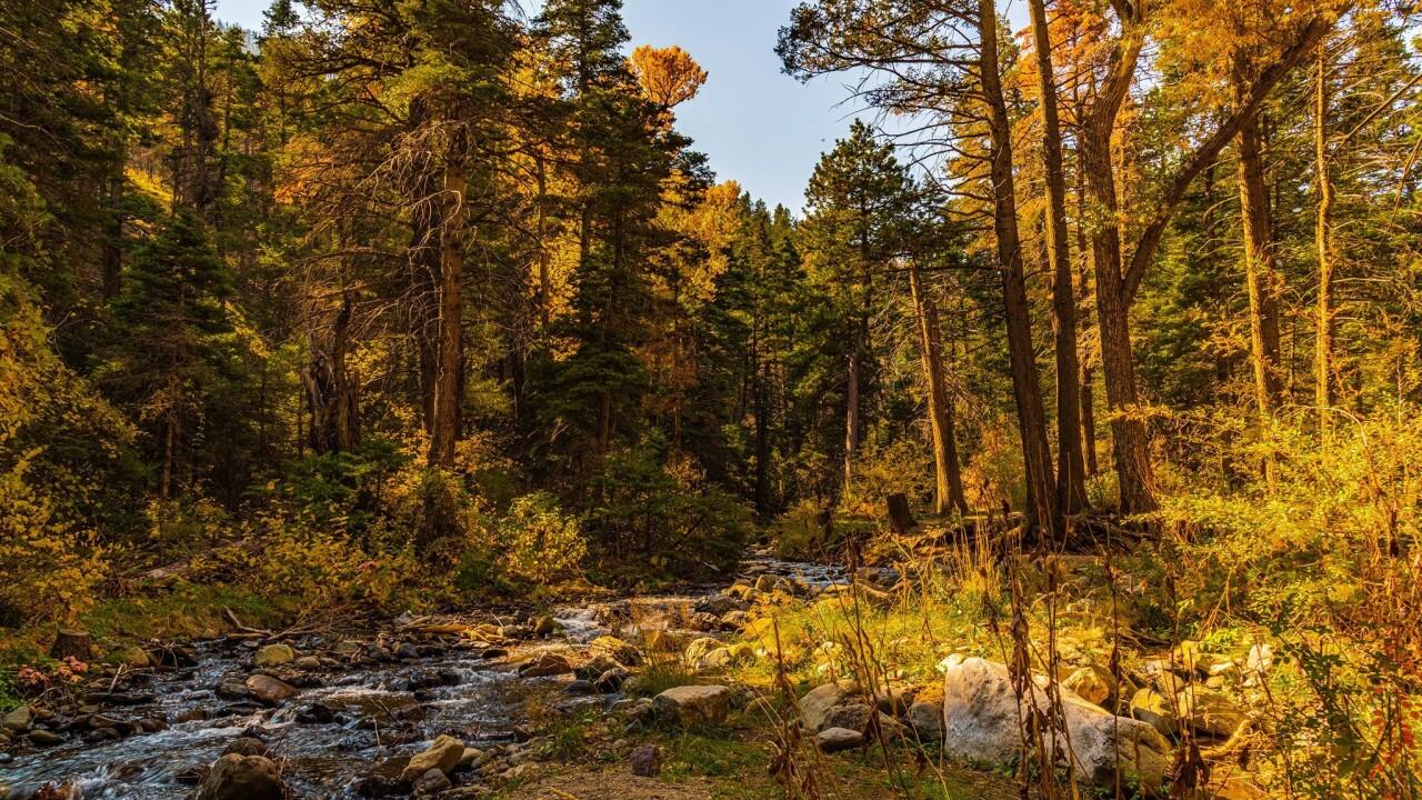 Hayden Creek Steve Shugart