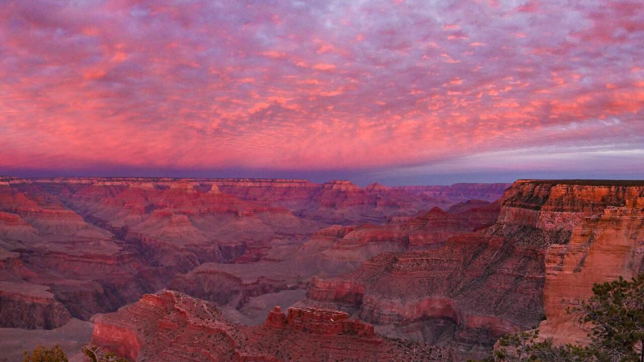 Grand Canyon National Park - 2021.jpg