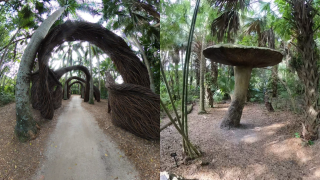 McKee Botanical Garden.png