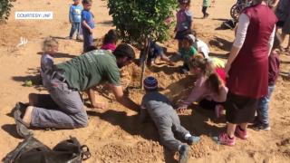 JNF tree planting.png