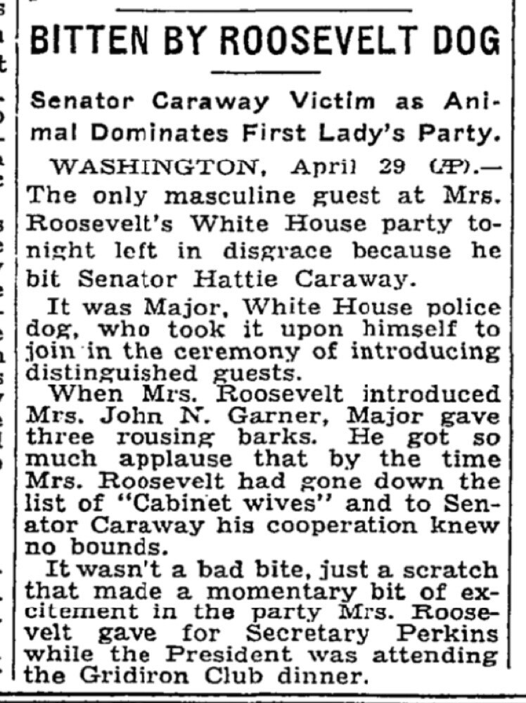 New York Times article written in 1933 describing an incident where President FDR's German Shepherd dog, Major, bit a U.S. senator during a party at the White House. Courtesy: New York Times, timesmachines.nytimes.com