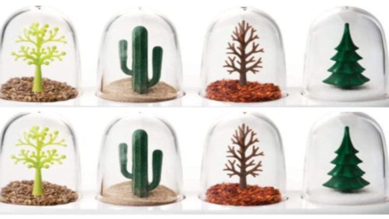 Adorable '4 Seasons' Salt, Pepper And Seasonings Set Is Just $14.99
