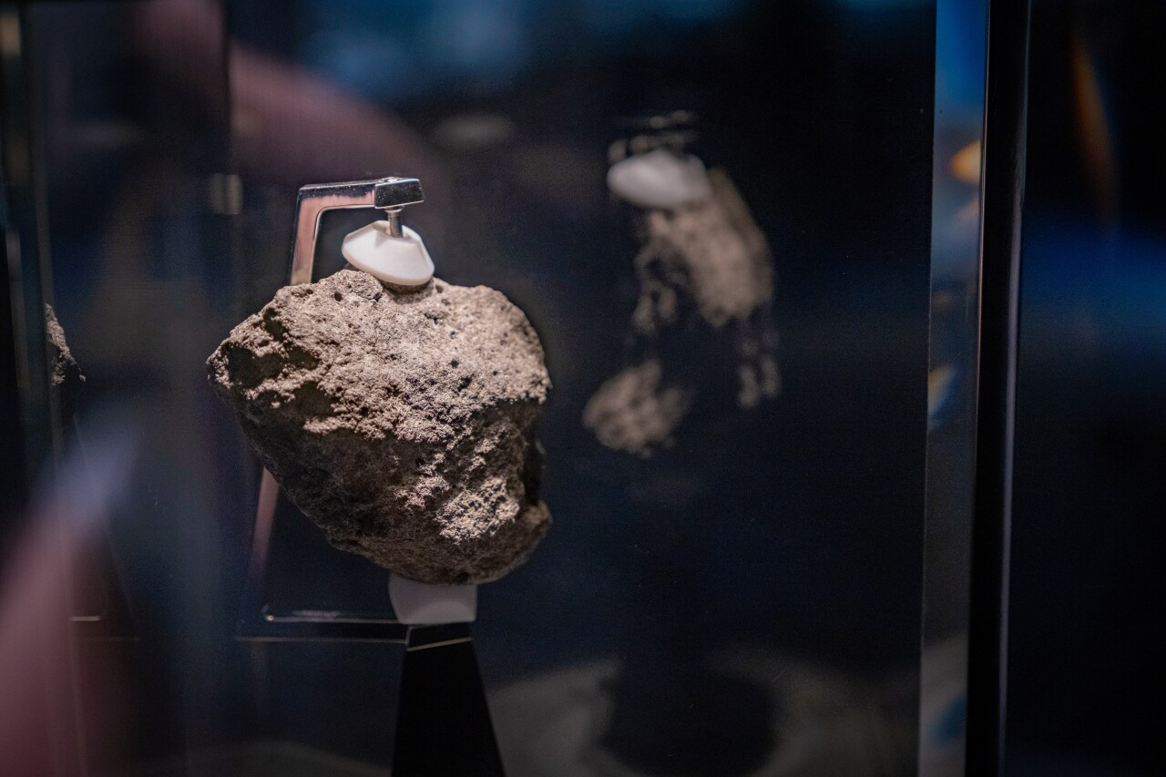 Hidden Gems - Cleveland Museum of Natural History 8.jpg