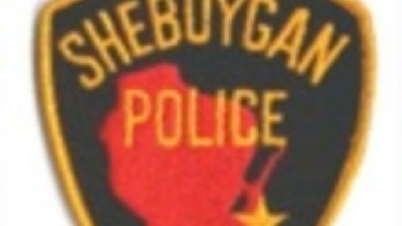 Sheboygan Police search for dog that bit 5-year-old