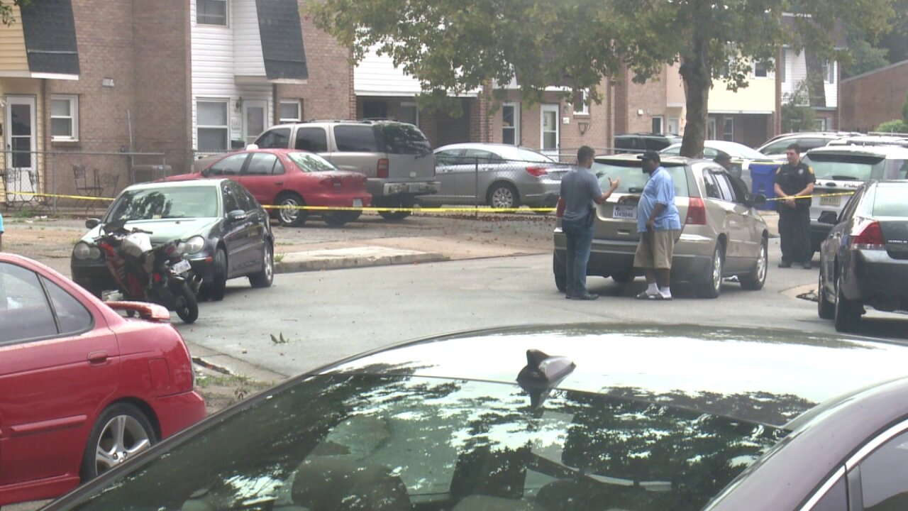 Man pleads guilty to murder after deadly stabbing in Norfolkneighborhood