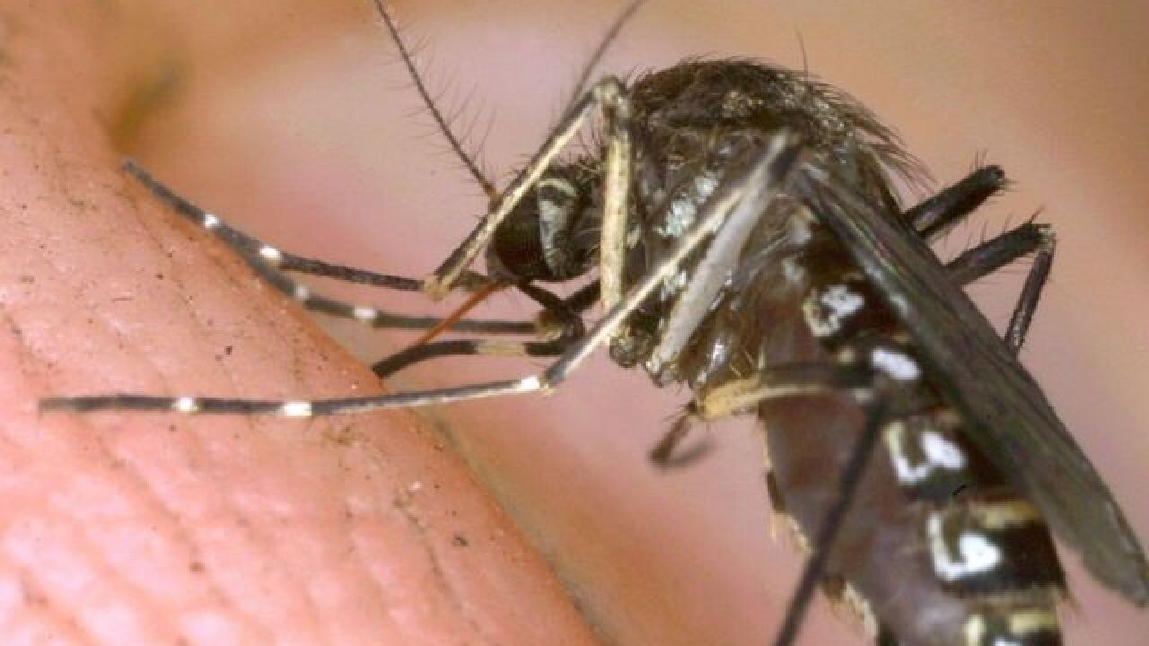 Few Zika samples being shared by Brazil