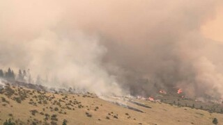 Some crews released from Moss Ranch fire