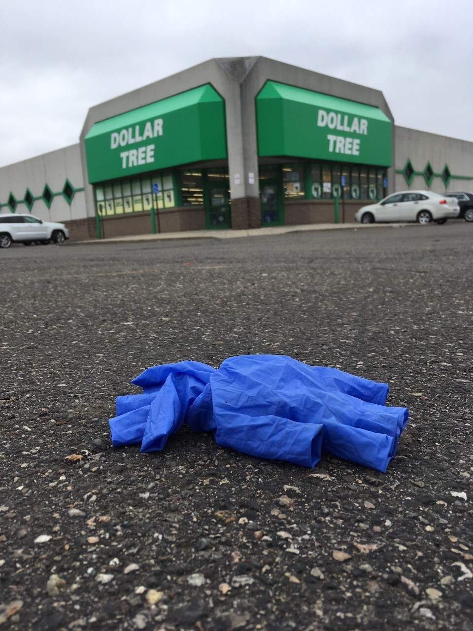 Dollar Tree gloves 1.jpg