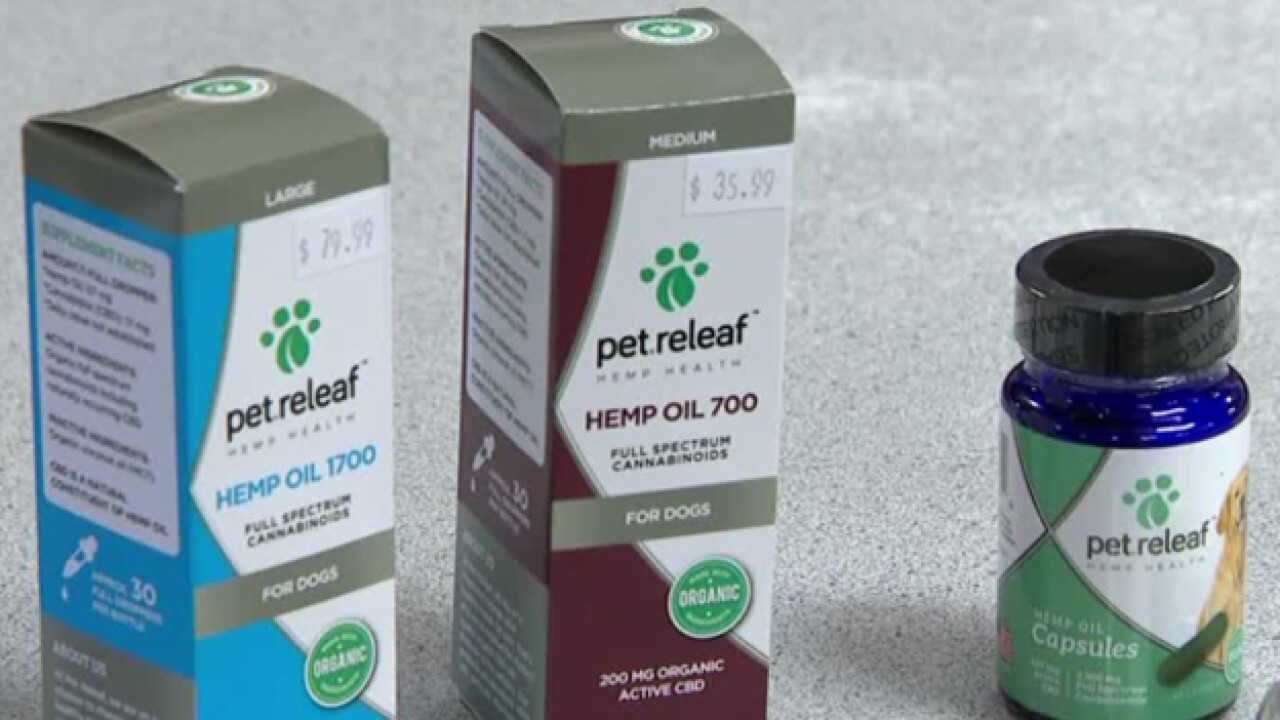 Pet Owners Turn To CBD To Calm Their Anxious Animals During Fireworks