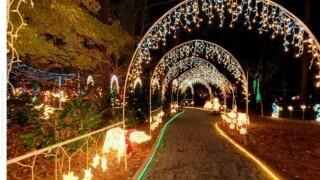 Dorothy B. Oven Park Lights