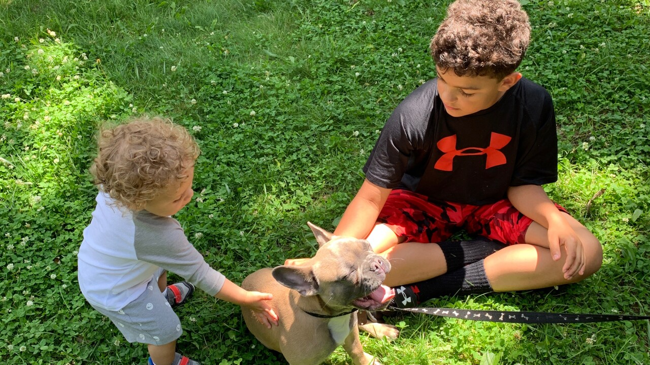 Kids and Kannon the stolen Kalamazoo dog