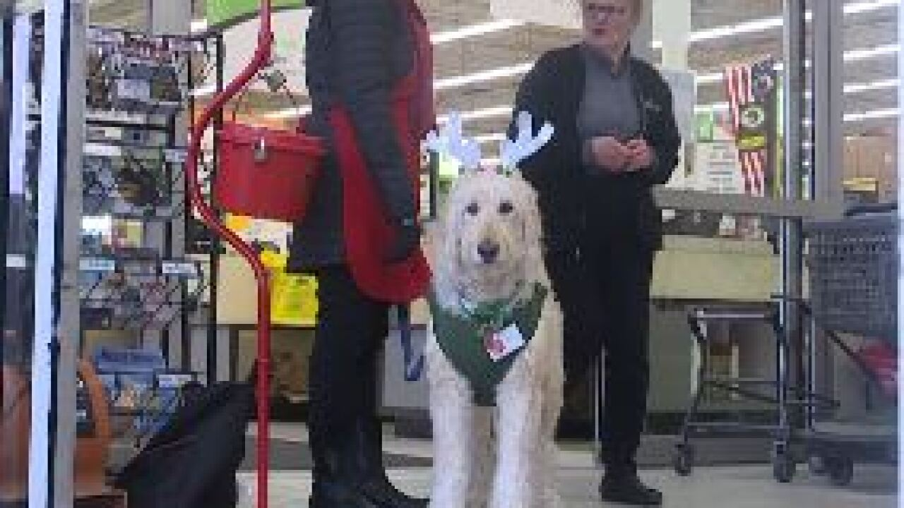 A Salvation Army's secret weapon is a therapy dog named Murphy