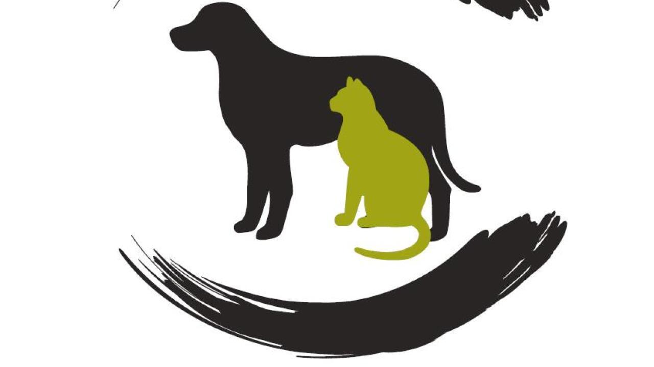 Yellowstone Valley Animal Shelter