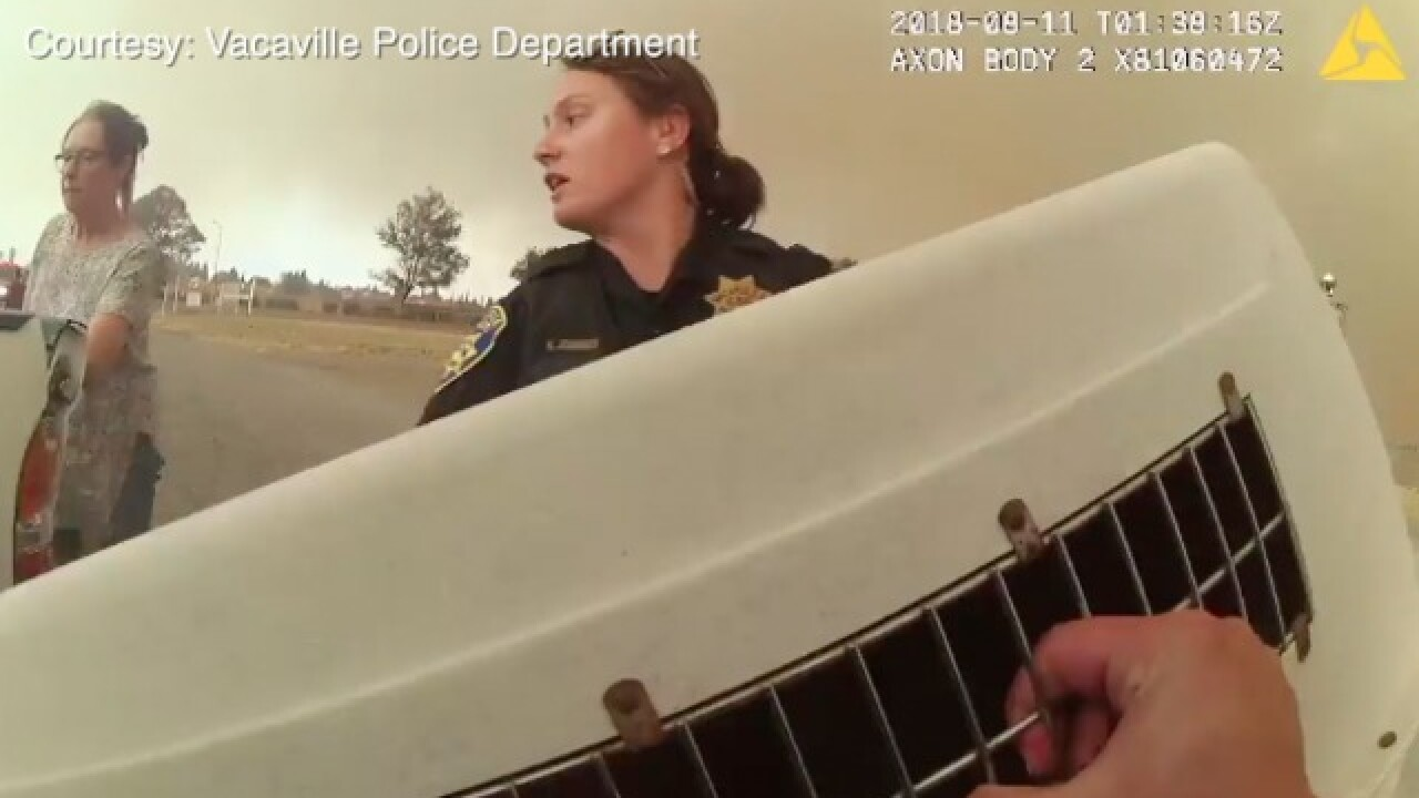 Body cam video shows frantic evacuation of animal shelter due to Nelson Fire