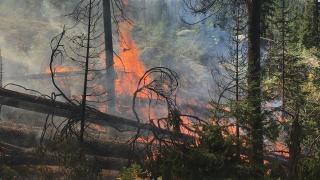 middleforkfire-91420.png