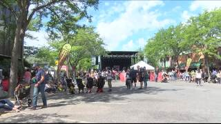 COVID-19 concerns prompt cancellation of River City Roots Festival