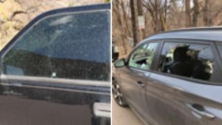 Vandalism in Manitou Springs