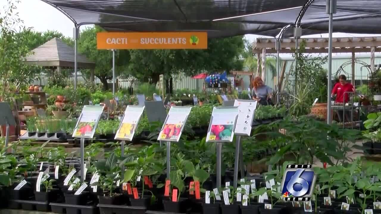 Gill's Gardening Center Plus Landscaping