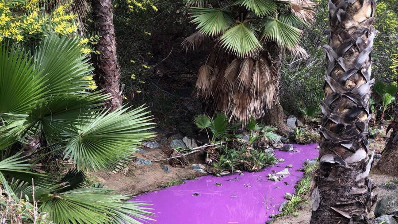 Paint in river.jpg