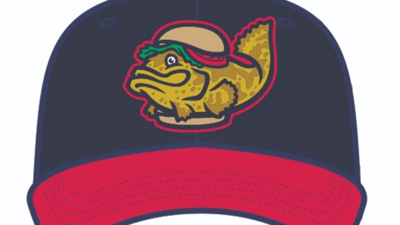 Fort Myers Miracle temporarily change name