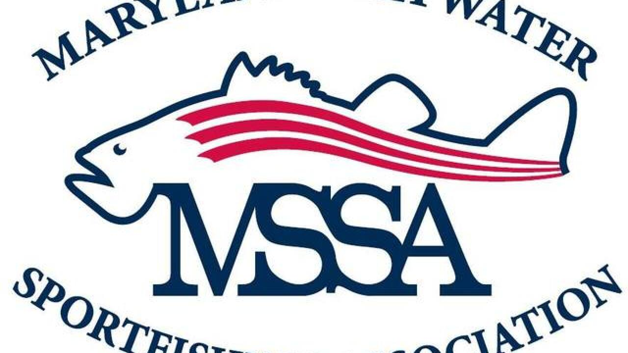 Maryland fishermen seek fresh start as MSSA flounders