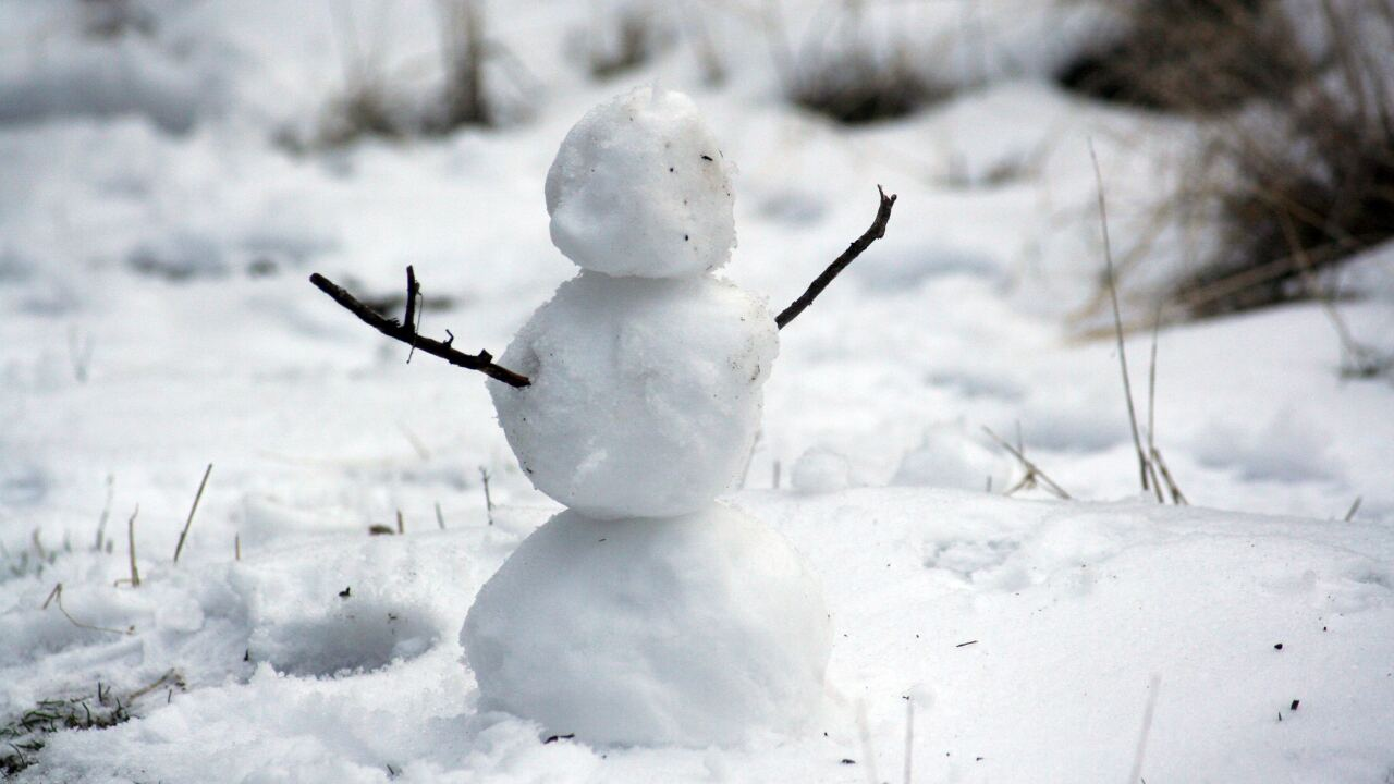 File image: snow man