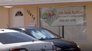 wptv-little-seeds-academy-.jpg