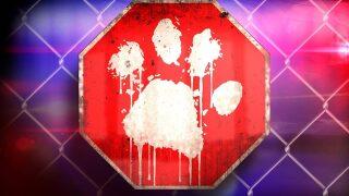 $5,000 reward offered in case of dog shot, killed in EagleMountain