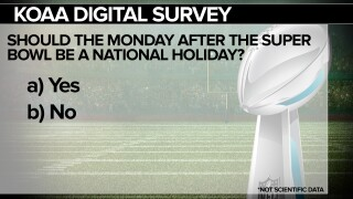 Survey Question: Should the Monday after the Super Bowl be a national holiday?