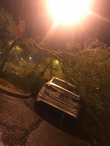 PHOTOS: Powerful winds, heavy rain led to damages across Valley (Aug. 8)