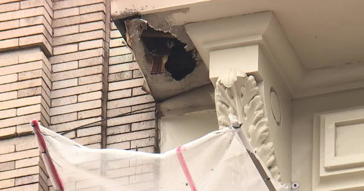 Local construction company reworks renovations after falcon nest found in building