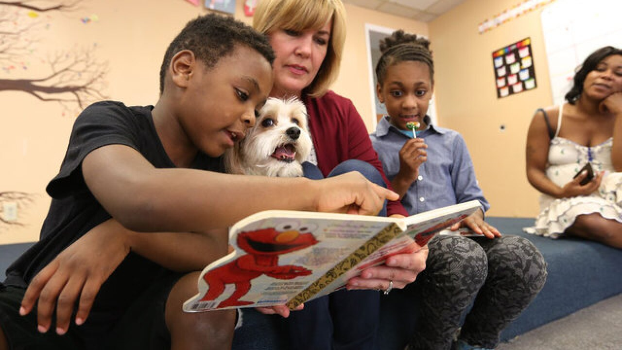 How these pets are helping homeless kids