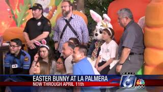 Easter Bunny.jpg