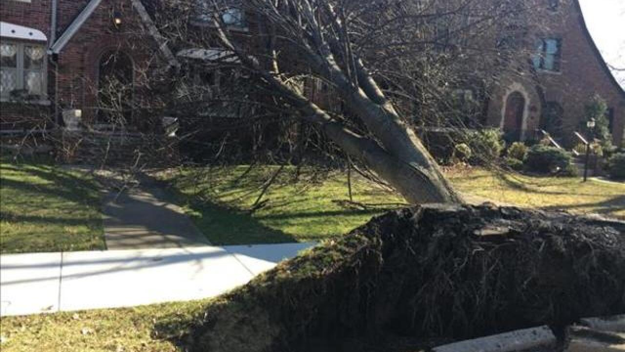 View photos of weather damage in metro Detroit