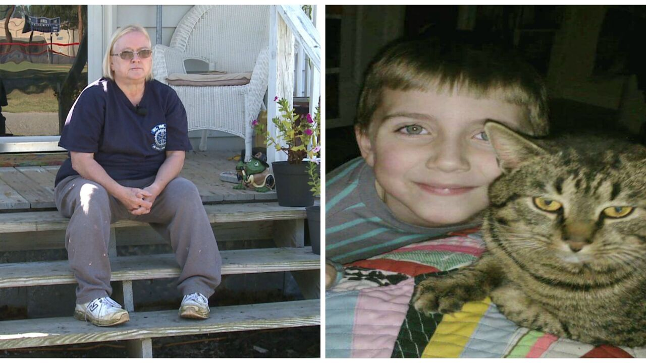 Grandmother bitten as 3 dogs attack and kill her grandson's cat