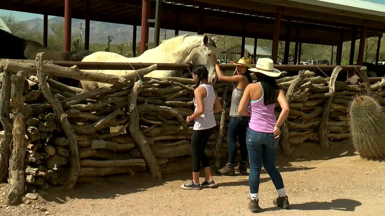 Secrets and history of Tanque Verde Ranch revealed