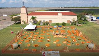 pumpkins first united.PNG