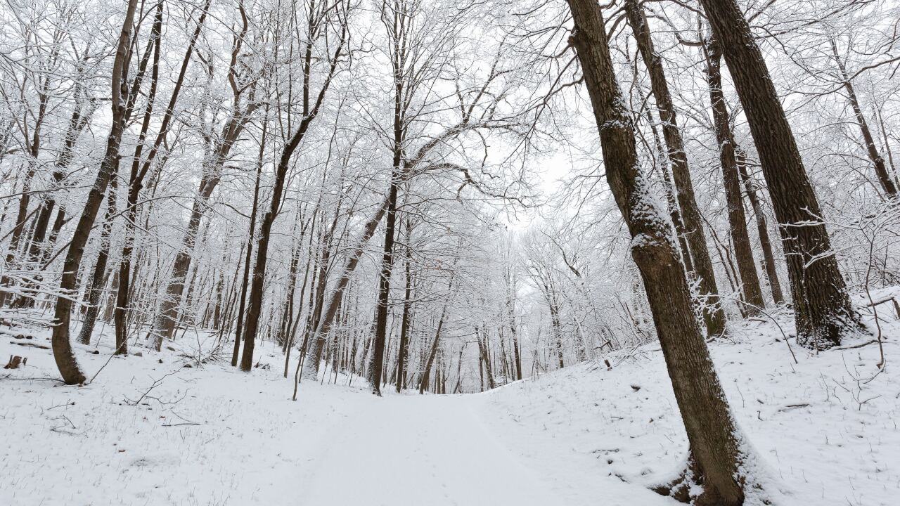 File image: winter weather