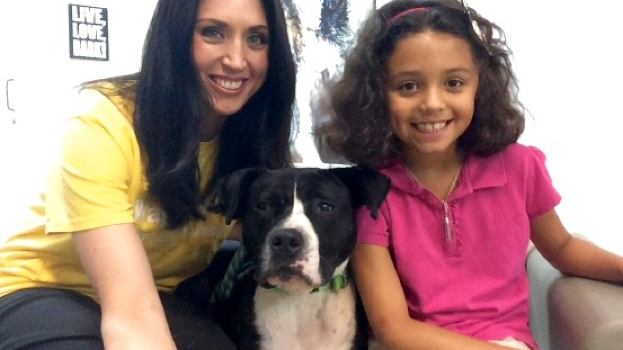 Fur-ever Home Friday – Adoptable Family FriendlyPets