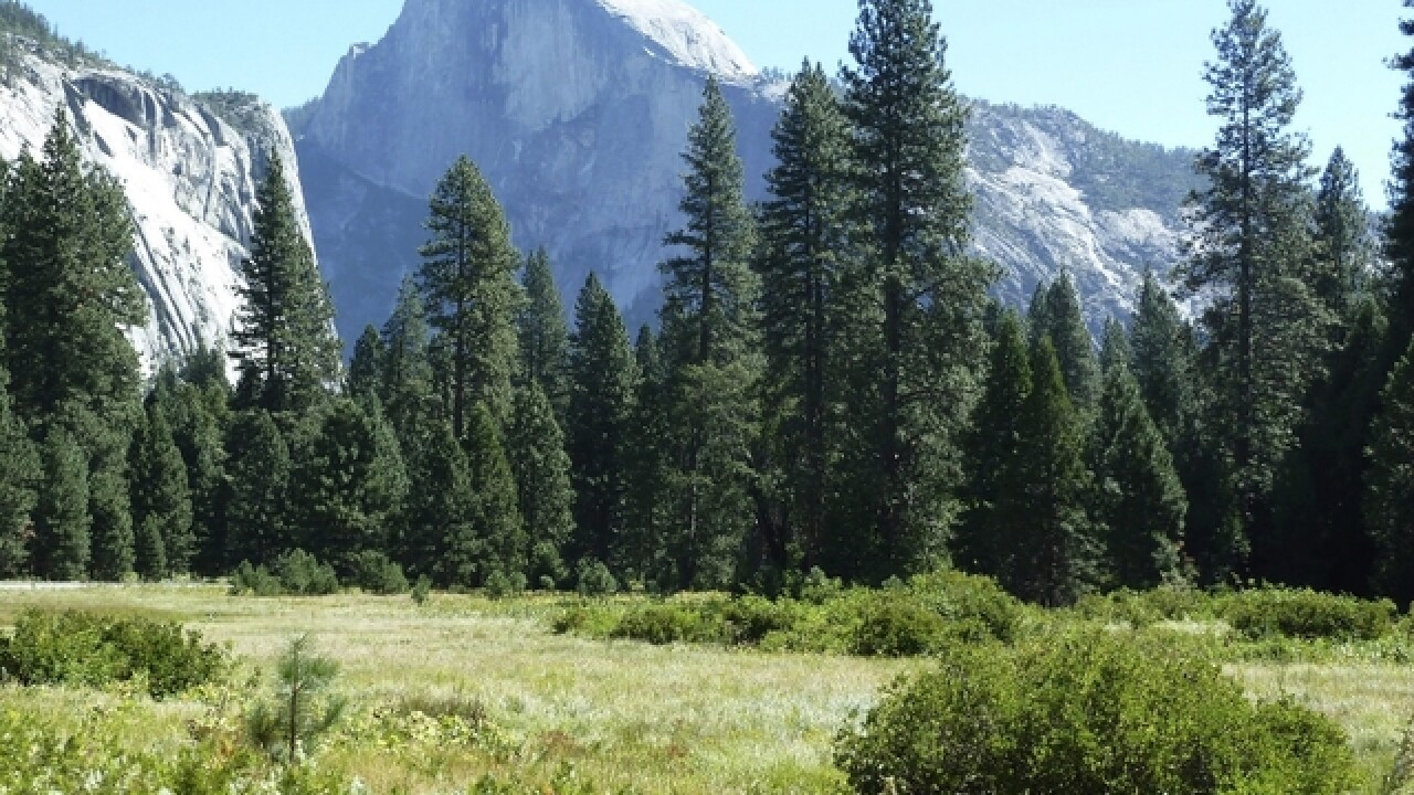 Officials: Two die after falling from overlook in Yosemite National Park