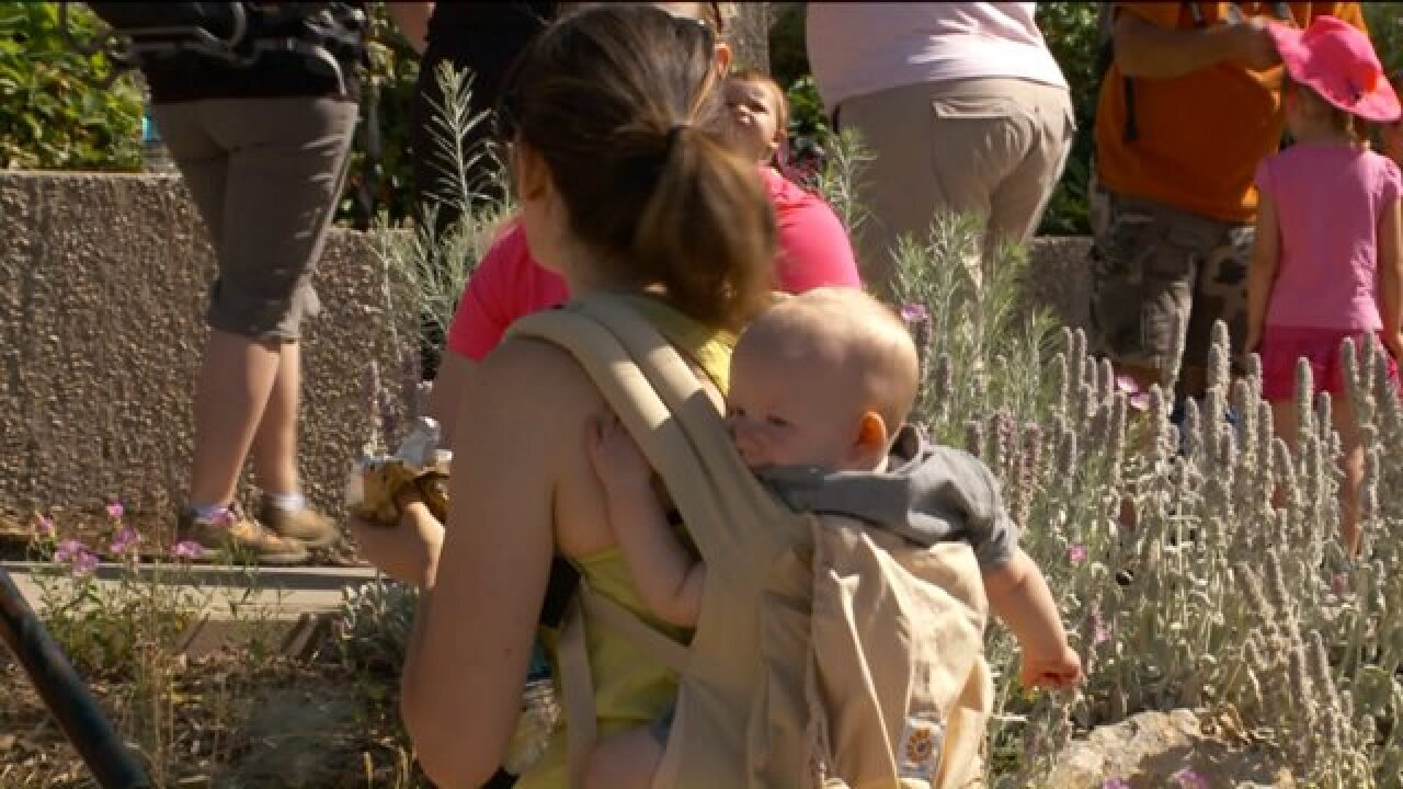 Hike to Ensign Peak promotes awareness of postpartum depression, resources for moms